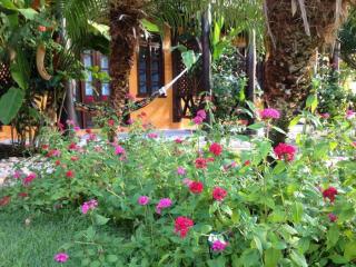 1540569481-jardim-flores-pousada-cumuruxatiba-bahia.png